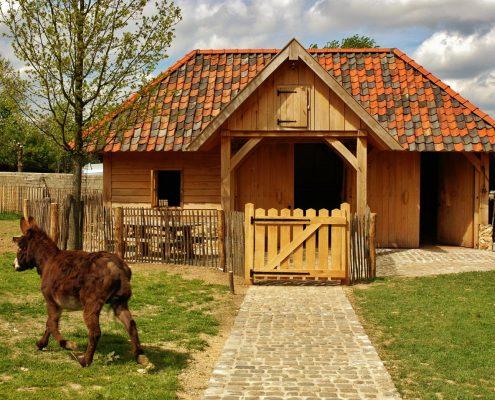 Kinderboerderij Camping Oosterberg